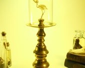 SOLD to OZABU Articulated Sunbird Skeleton Under Glass Dome On Tall Vintage Brass Base