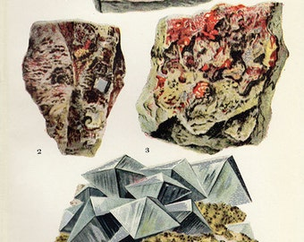 Vintage 1911 Minerals Print Antique Gems Precious Stones print gemstones print, bookplate art print, minerals wall print wall art 6