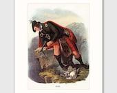 Ross Highland Wall Art w/Mat Scottish Hunting Lodge Decor, Clan Kilt No. 188