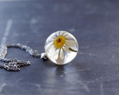 Wild chamomile necklace - Real Daisy -like flower pendant - resin daisy neckllace
