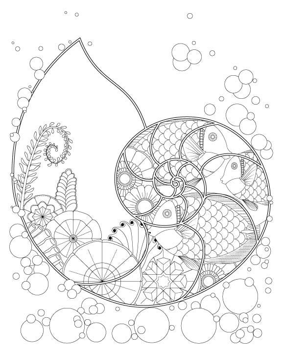 Fantasy Nautilus Shell With Ocean Plants Fish Coloring Page For Adults Printable