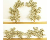 """Two Syroco Dogwood Flowers Wall Decor Panels, Gold/Cream, Large-30"""" H"""