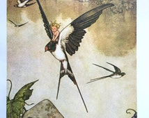 1913 W HEATH ROBINSON TOMMELISE and a Swallow Print Ideal for Framing