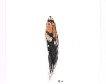 Snipe's Feather Original Miniature Watercolor, Free Shipping