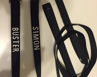 Personalized Dog 6 Foot Leash
