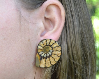 Pyritized Ammonite Slice Stud Earrings / Cabochons (choice of 4 pairs)