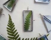 Fern Leaf Necklace.Botanical Specimen Necklace.Real Fern Leaf Preserved in a glass locket. Glass Locket. Botanical Jewellery.