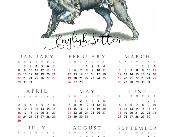 English Setter 2017 yearly calendar