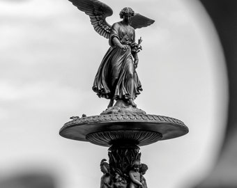 Fine Art Photography, Central Park Print, New York City Wall Art, NYC Print, Home Decor, Angel Wings, 8 x 12 Print, Black, White, Gray