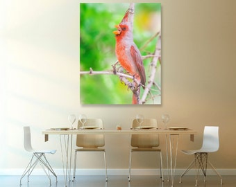Red Cardinal, Green Forest, Fine Art Print, Bird Nature Wildlife Photography, Wallart Photo Printable, Home Office Decor, Bird Lover Gift