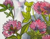 Clovers, Botanical Illustration, Original Ink Drawing