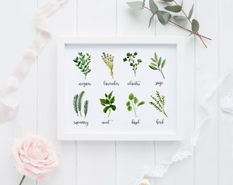 PRINTABLE Art Herbs Kitchen Decor Kitchen Art Print Kitchen Wall art Mint oregano Basil lavender rosemary Sage Herb Watercolor herbs