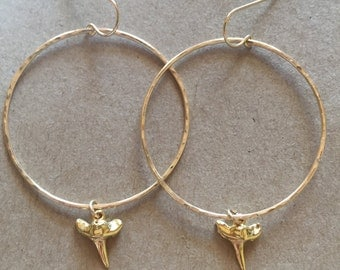 Gold Shark Tooth Hoops