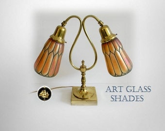 Student vintage desk or table lamp - two art glass shades
