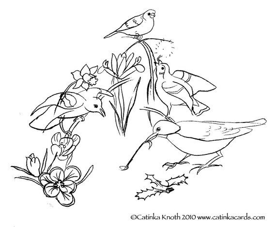 Spring Birds Flowers Coloring Page Printable Pdf Wall Art