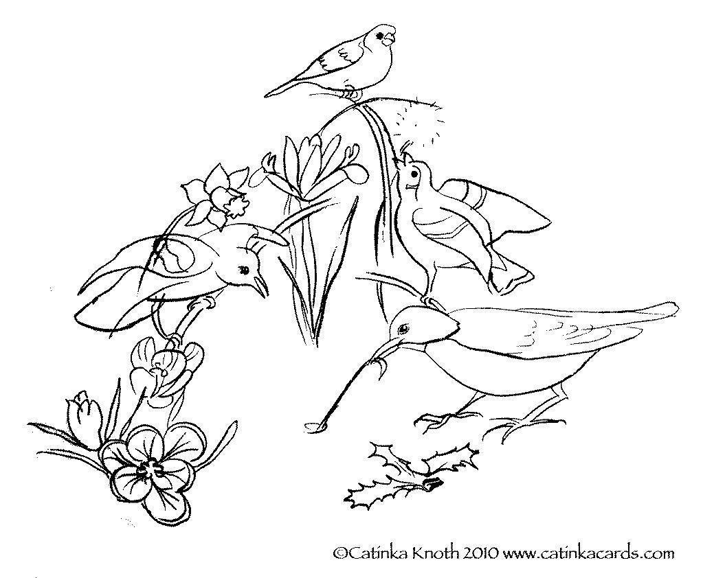 birds and flowers coloring pages | Spring birds flowers coloring page printable pdf wall art