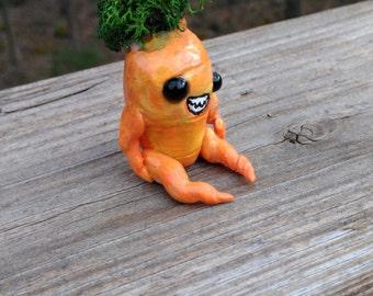 Carrot Munster