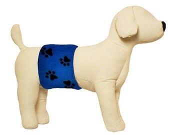 Male Dog Belly Band for Training and Incontinence - Blue Paw Print