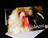 Wildlife Christmas Cards ...