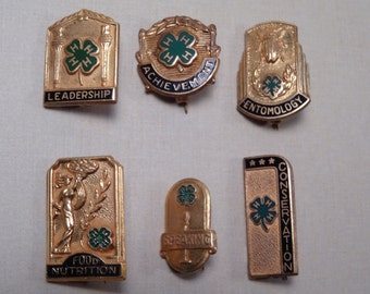 RARE COLLECTION 4H County Honor Pins Business Sponsors Set of Six
