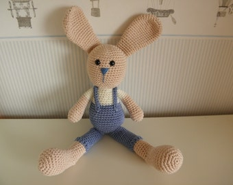 Lovely bunny with blue pants