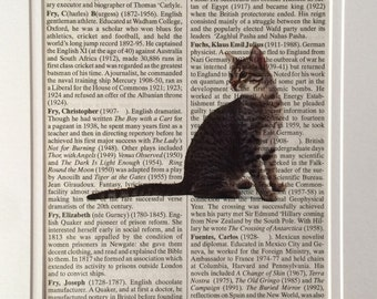 Cute Cat Book Print -  Recycled Vintage Dictionary Page, Home Decor, Poster, Art, Animal Lover