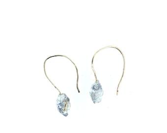 Herkimer Diamond Lucky Hoop Earrings