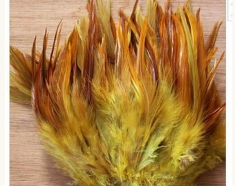 MAXI 50 feathers various confections premium LOT (PROMO)