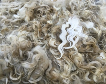 100% Pygora Raw Fleece (sold by the ounce)