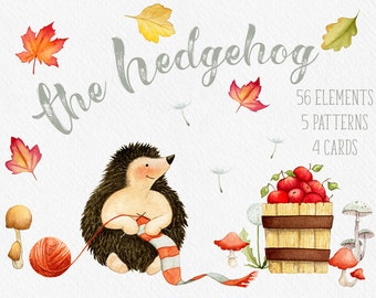 Fall clipart, Hedgehog clipart, Autumn clipart, fall leaves clipart, mushroom clipart, card templates, watercolor, digital paper,  baby art