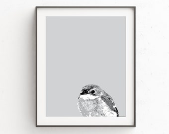 Bird Wall Print, Animal Wall Print, Animal Wall Poster, Bird Print Art,  Animal Print, Animal Art Print, Kids Room Art, Animal Wall Decor