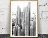 Cactus Print, Desert Art, Photography, Arizona, South Western Modern Decor, Black and White Photo, Aztec Wall Art, Large Digital Art Poster