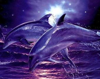 Atlantian Dolphins