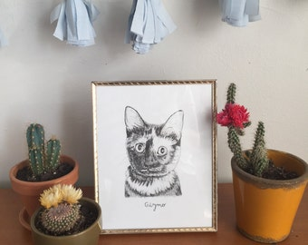 Custom Hand Drawn Cat Portrait