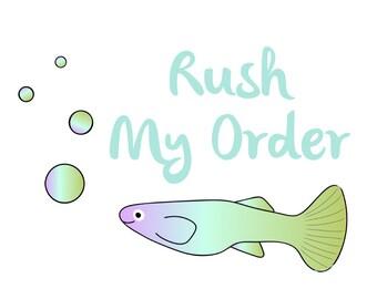 RUSH MY ORDER Upgrade