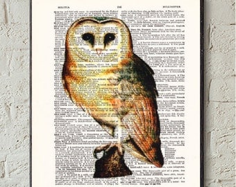 Barn Owl- Dictionary Print-  Book Print- -Upcycled Antique Book Page-  Dictionary Book Page