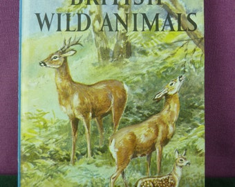 Vintage Ladybird book series 536 British Wild Animals marked  price 2'6 hardback