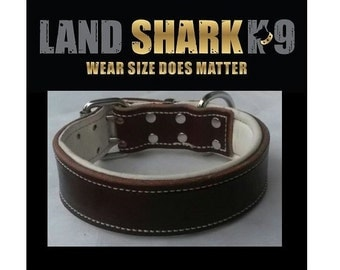 Brown Leather Dog Collar & Soft Pure White Leather Padded Inner Lining