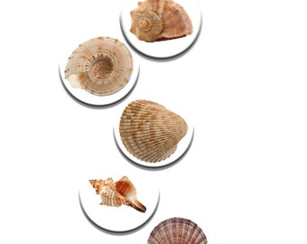 A Pack of 5 SeaShells Dress making pattern Weights Sewing Patterns like on the TV Sewing Bee NEW