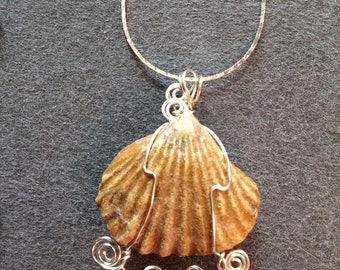 sterling silver chain with clam fossil pendant