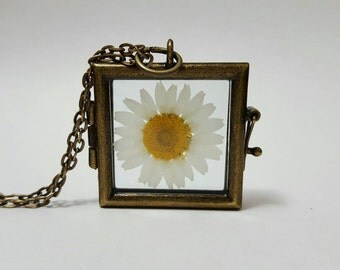 Real Daisy Necklace Daisy Locket Spring Fashion Flower Pendant Nature Jewelry Boho Pressed Flower Spring Botanical Jewelry Gift for Her