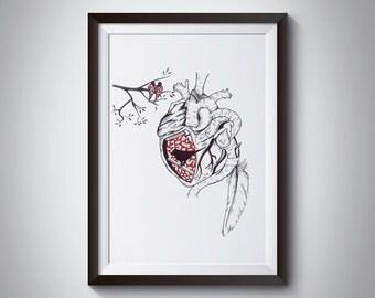 The heart of the bird