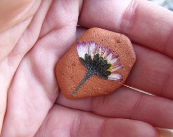 Dried Flower Art - Daisy on Sea-Pottery Pebble