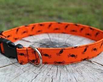 Halloween Dog Collar - Spider Dog Collar - Halloween Dog Harness -  Halloween Dog Leash - Fall Dog Collar - Orange and Black Dog Leash