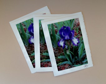 Blank Note Card #39 / Limited Edition Print / Photography