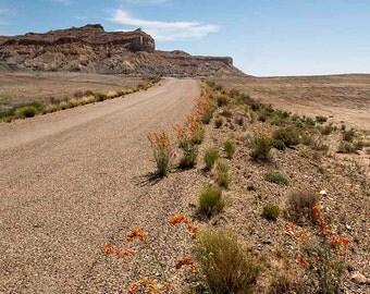 Desert Road,Photo,Digital Photo Down Load,Image,Art Photograph,Landscape Photo,Art,Picture,Lonely Desert Road,8 x 10 in( 20 x 25 cm) 300 dpi
