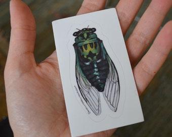 Cicada - Vinyl Sticker