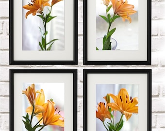 set of 4 photographs lilies from 40 euros. photography, floral nature, nature decor.