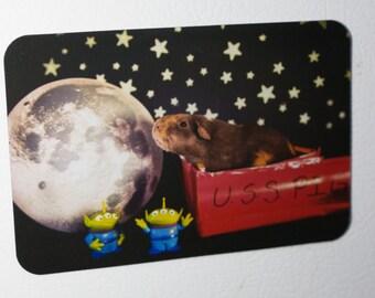Fridge Magnet: Guinea Pig in Space