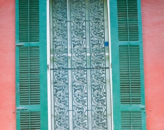 New Orleans Decorative French Quarter Door